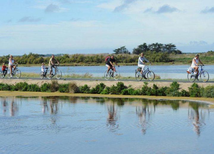 Balade en vélo sur l'ile de Ré
